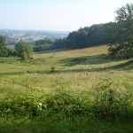 Paysage_aux_environs_de_Chamborand_(Creuse,_Fr)